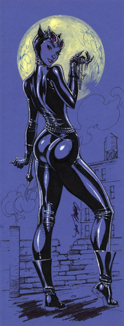 Catwoman insert