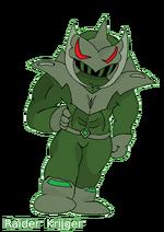 Raider Krijger