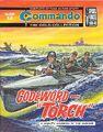 4888 codeword torch.jpg