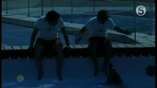 Morte tra i delfini1