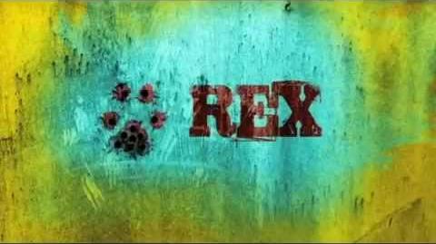 Rex 8 - Interviste lampo dal set - Noemi Marchica