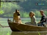 Il coccodrillo del Danubio