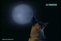Il killer della luna piena 2