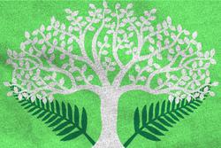 The Elven Domain