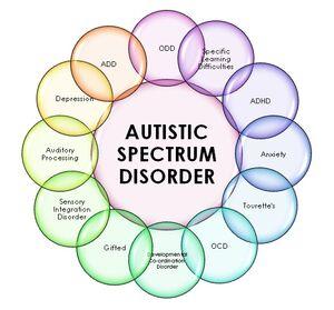 Autism Spectrum chart