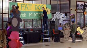 Turning Bears into Fat Dogs