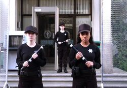Stun batons for everyone