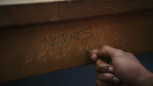 Notches