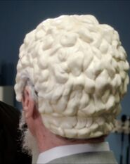 The back of the toupee