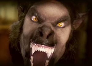 HFISSS Im a die by werewolf