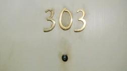 APT 303
