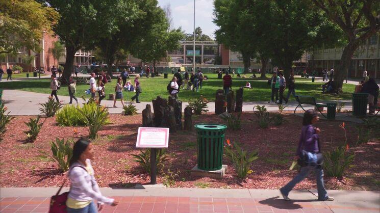 Greendale campus