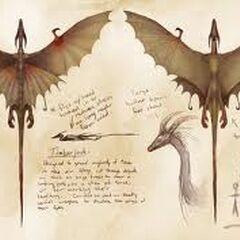 Concepto de Arte del Dragón