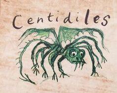 Centidile