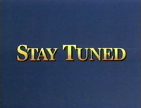 Stay Tuned Disney 1993-1996 Bumper