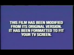 Second Buena Vista and Walt Disney Home Video modified screen (Formatted to fit your TV screen Variant)