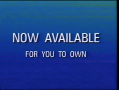 Buena-Vista-Now-Available-1991-Innocent-Man
