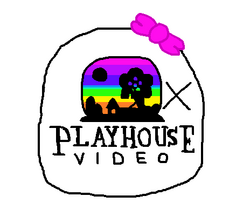 Playhouse-Videoball