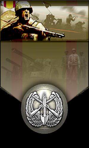 Commander Infantry Company
