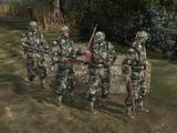Grenadiers