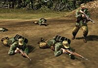 Luftwaffe Ground Force in Combat 01