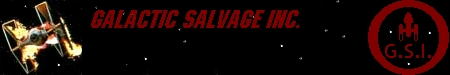 Galactic Salvage Inc Banner Year 2