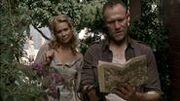 Merle 8