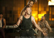 Merle 9