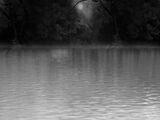 Lake Manipulation
