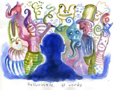 12 13 08 hallucinate b