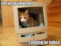 I-m-in-ur-internet-cloging-ur-tubes