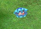 File:Bubble Clam.jpg