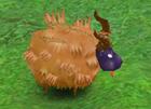 Whacky Lamb