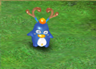 Horned Penguin