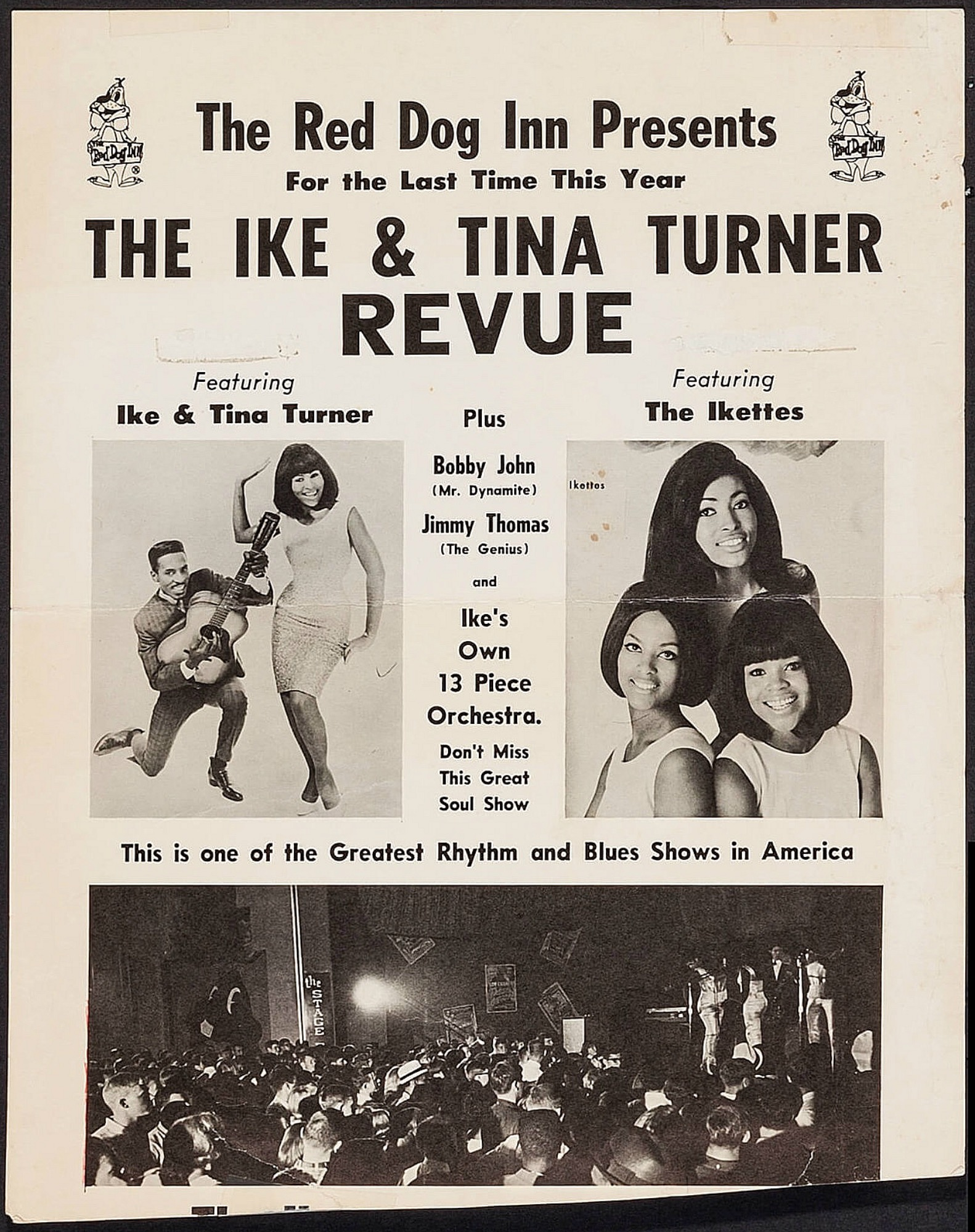 Tina Turner Concerts 1960s | Concerts Wiki | FANDOM powered