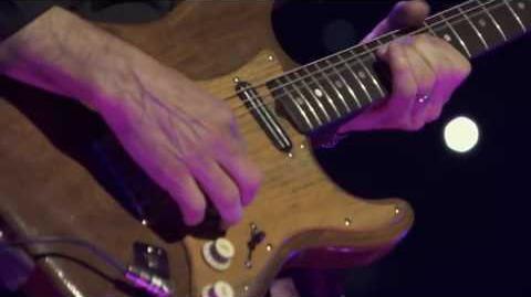 Bruce Springsteen Purple Rain (Pro Shot)
