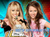 Best of Both Worlds Tour