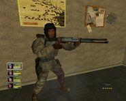 Desert Storm II 870