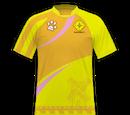 Rosa dos Ventos Futebol Clube