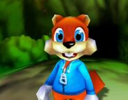Conker in windy