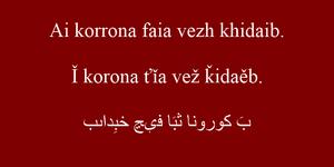 Vakhai - Elkhabiza-Akasia-Musa Comparison