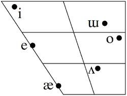 Emmut vowel trapezoid