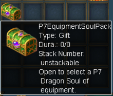 P7 Equipment Soul Pack