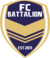 FC Battalion Season 1 Logo