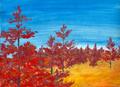 Thumbnail for version as of 00:05, September 16, 2013