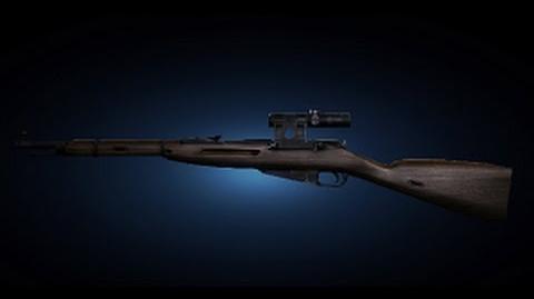 Mosina rifle Shooting Test