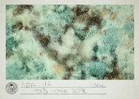 Ref IIA Mold Comp Detail