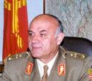 Dimitar Mitkov