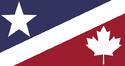 USNA Flag