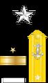 Capt Insignia (STN).png